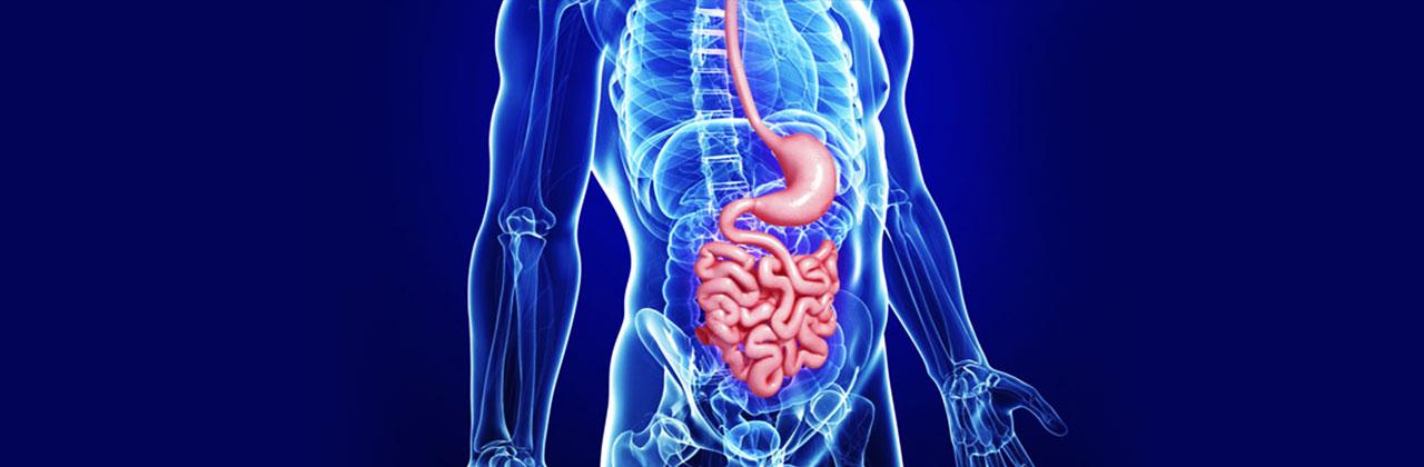 Surgical-Gastroenterology